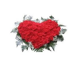 сердце из 101 цветка гвоздики и зелень