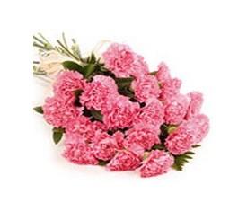 букет из 25 розовых гвоздик
