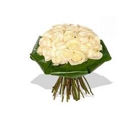 букет из 19 белых роз и аспидистры