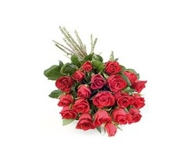 Букет из 19 алых роз и зелень