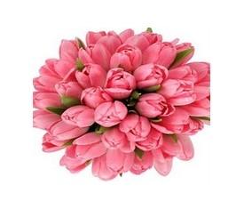 букет из 49 розовых тюльпанов с доставкой по Москве