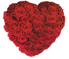 Композиция из 71 Розы Гран-при