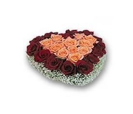 Букет из черных и розовых роз, гипсофила