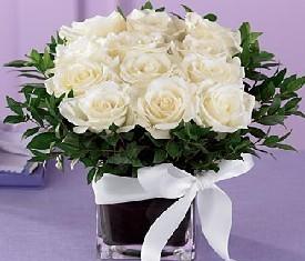 Букет из 15 белых роз, рускуса