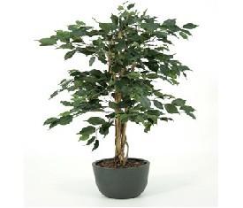 Искусственное растение Фикус Экзотика