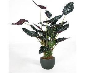 Искусственное растение Алокация