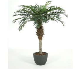 Искусственное растение пальма Феникс