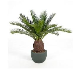 Искусственное растение Цикас