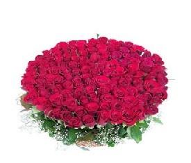 Корзина из 501 Розы Гран при