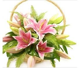 Корзина из 11 розовых лилий, зелени
