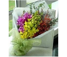 Букет из 41 разноцветной орхидеи дендробиум
