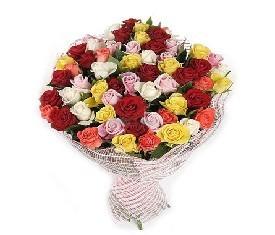 Букет из 51 разноцветной розы микс