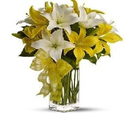 Букет из 9 белых и желтых лилий
