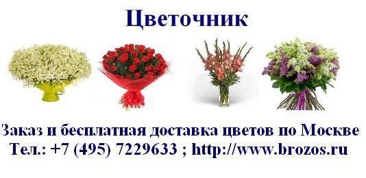 лилия, цветочная индустрия.ру