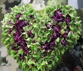 сердце из 150 орхидей