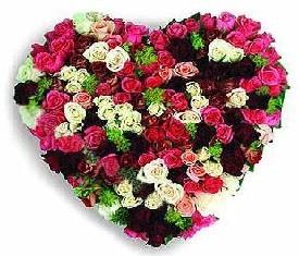 сердце из 199 разноцветных роз