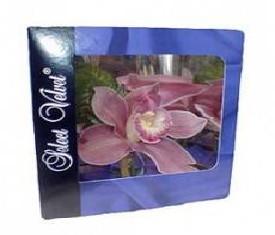 Орхидея в коробочке на праздник 8 марта
