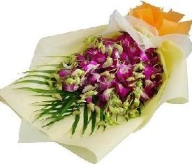 9 цветов розово малиновой орхидеи и зелени робилини