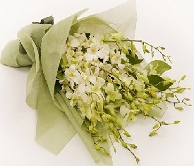Букет из 9 белых орхидей дендробиум