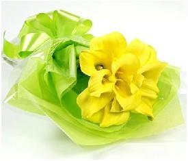 Букет из 9 желтых калл