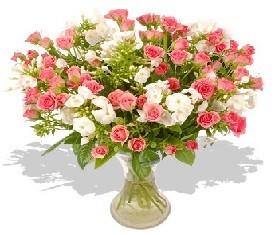 прекрасный букет из 19 цветов кустовых роз