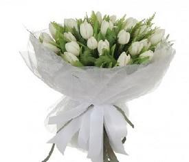 45 цветов белых тюльпанов и зелень заказать с доставкой