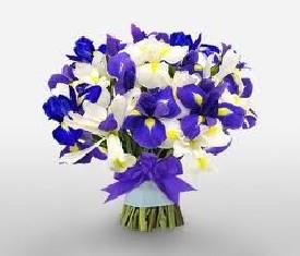 мужской букет из 99 цветов ирисов