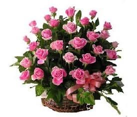 корзина из 51 Роза аква