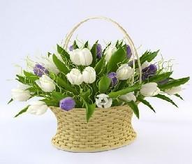 корзина из 49 Тюльпанов и зелень