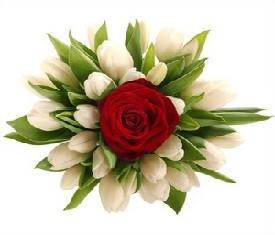 букет из цветов тюльпанов и розы на 8 марта