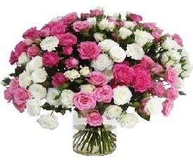 букет из 39 цветов кустовой розы