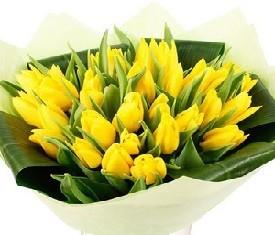 Букет из 45 желтых цветов тюльпанов