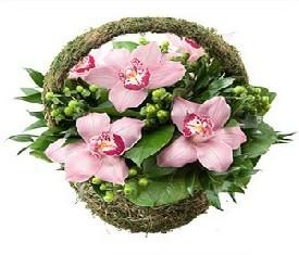 корзинка цветов орхидей