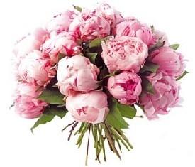 Букет из 19 Розовых пионов заказать с доставкой