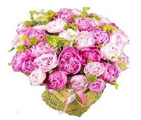 букет из 29 розовых цветов пионов