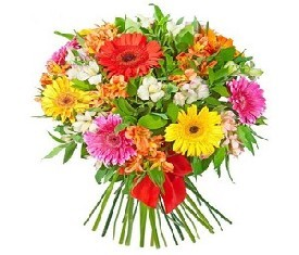 Букет из 10 цветов герберы и 15 альстромерий