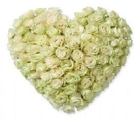 Сердце из 101 белой розы