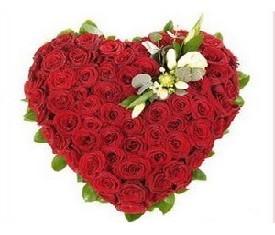 сердце из 101 красной розы гран при