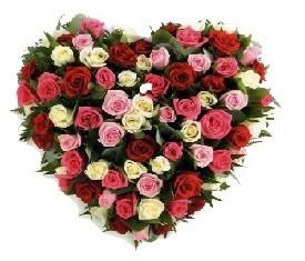 сердце из 85 цветов разноцветной розы микс