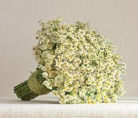 свадебный букет невесты из полевых ромашек