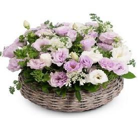 корзина из 19 белых и розовых лизиантусов