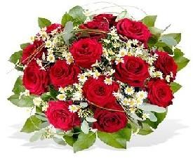 19 красных роз и ромашки