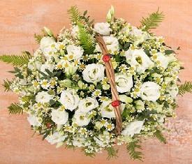 корзина из 25 цветов ромашки и лизиантусов купить в Москве