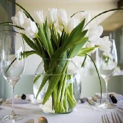 оформление цветами тюльпаны