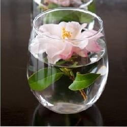 оформление цветами орхидеи
