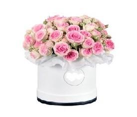 19 кустовых нежных розовых роз в подарочной коробке