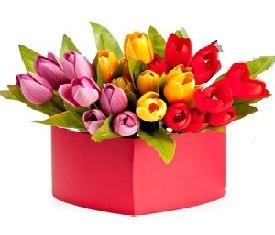 подарочная коробка с 49 разноцветными тюльпанами