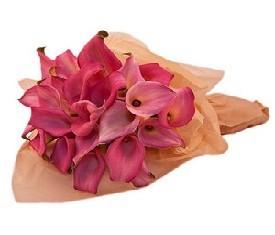 букет из 19 розовых калл купить с доставкой