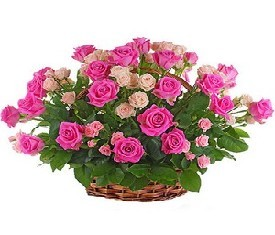 корзина из 40 роз аква и 9 кустовых роз