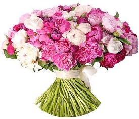 букет из 55 белых и розовых пионов